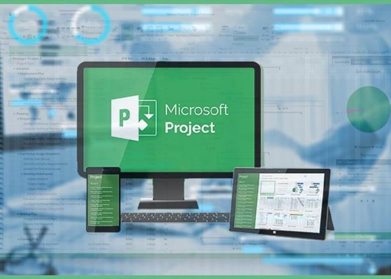 Cơ sở dữ liệu của microsoft project 2019 theo tài khoản